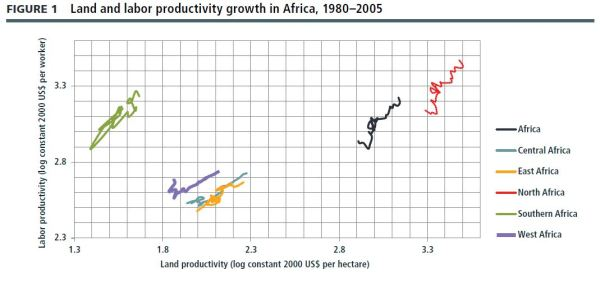 Source: S. Benin, A. Nin-Pratt, S. Wood, and Z. Guo, Trends and Spatial Patterns in Agricultural Productivity in Africa: 1961–2010, ReSAKSS Annual Trends and Outlook Report 2011 (Washington DC: International Food Policy Research Institute, 2012).